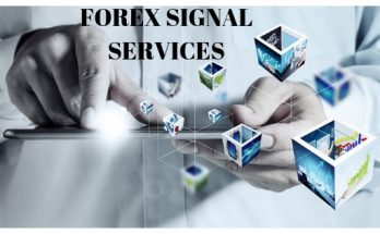 Forex Signal Services